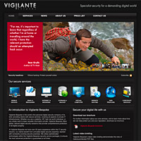 Vigilante Bespoke Website